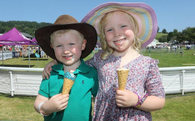 Royal Welsh Show 2019.Pictured is Elsi Pritchard (5) and Ifan Pritchard (3)Picture by Phil Blagg.PB353-2019-41