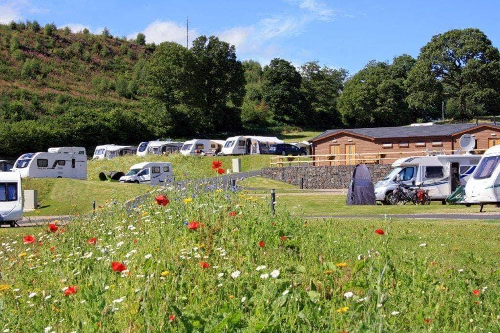 Red Kite Touring Park: Llanidloes adult-only campsite is 'best in Wales'