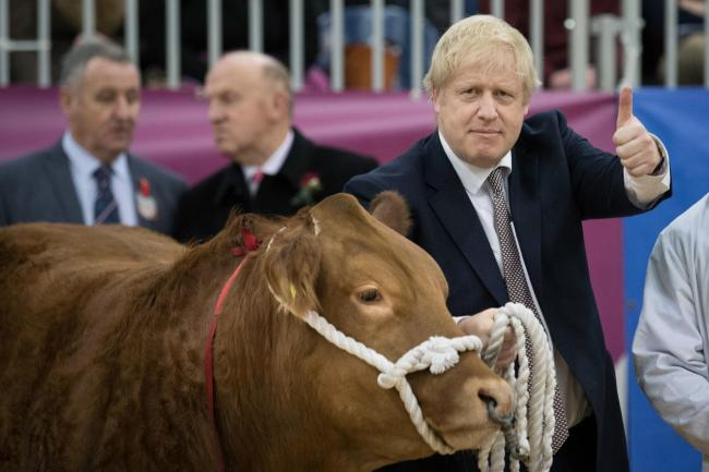 Prime Minister Boris Johnson, visits the Royal Welsh Showground, in Llanelwedd, Builth Wells.whilst on the General Election campaign trail. PA Photo. Picture date: Monday November 25, 2019. See PA story POLITICS Election. Photo credit should read: Stefan