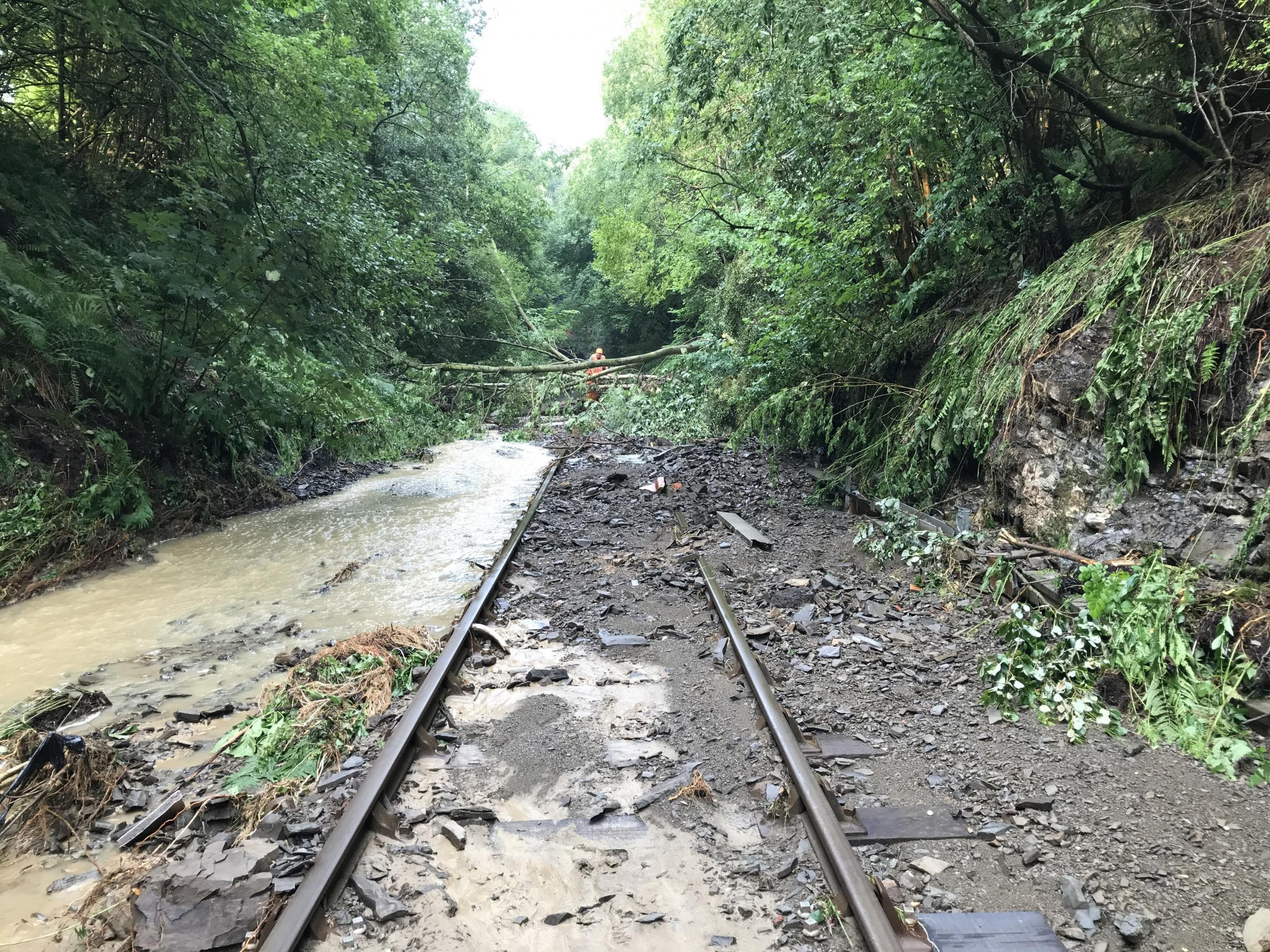 Powys rail services will be back on track from Monday, November 2
