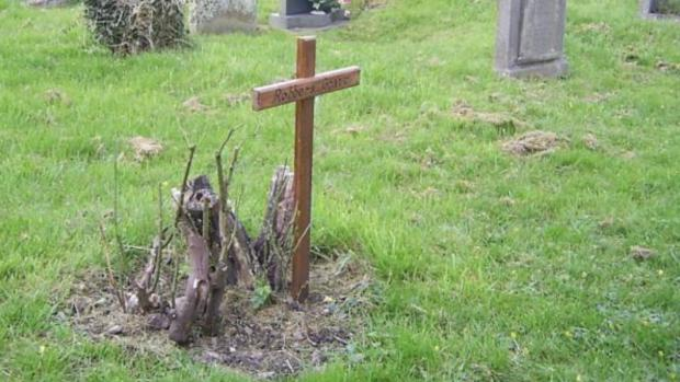 County Times: The grave of John Davies. Picture: Montgomery Blog Spot.