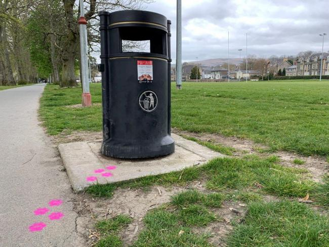 Council paints paw prints near bins as part of anti-dog fouling campaign