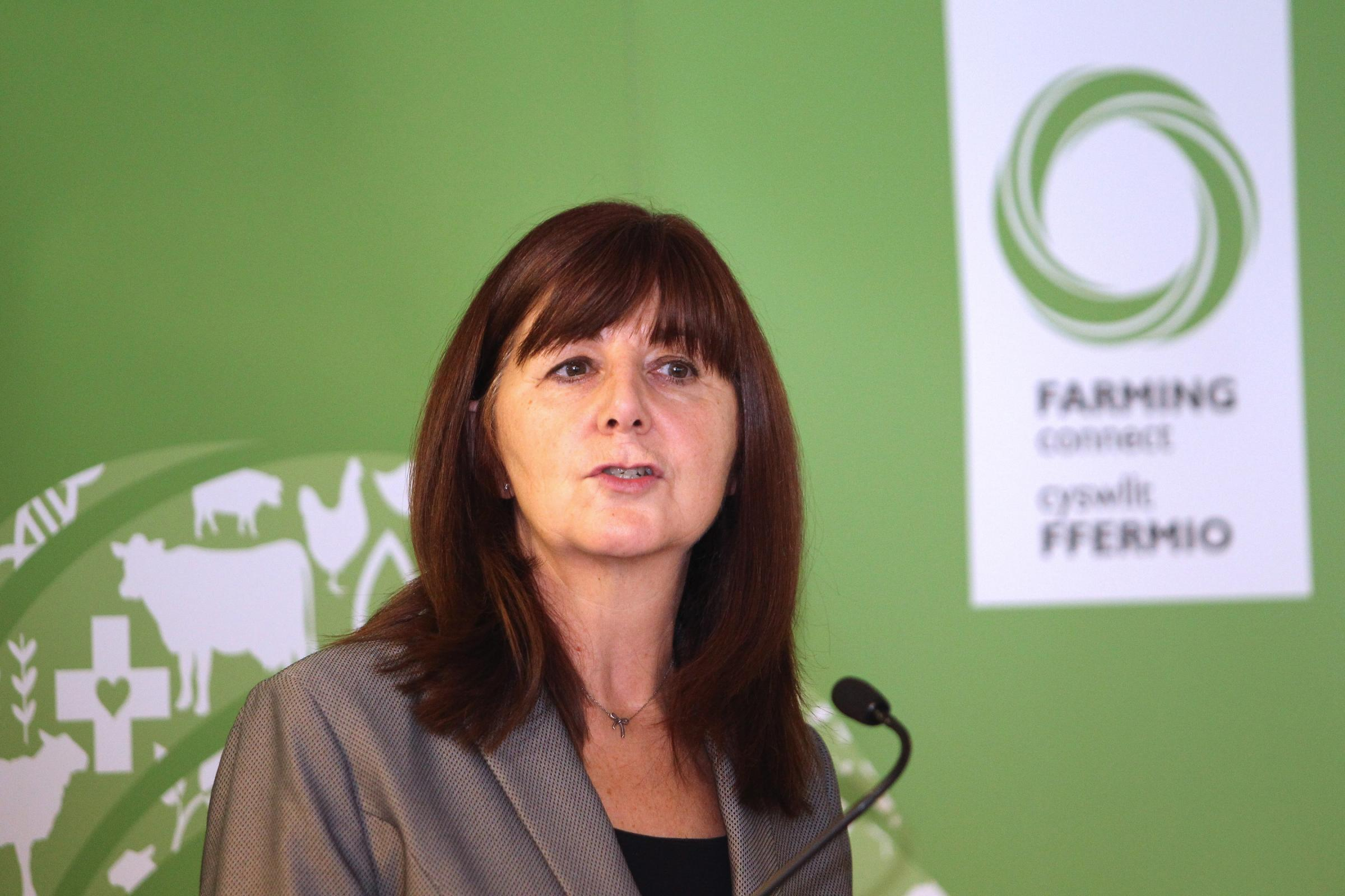 Cabinet Secretary for Energy, Planning and Rural Affairs, Lesley Griffiths. Picture: Mike Sheridan