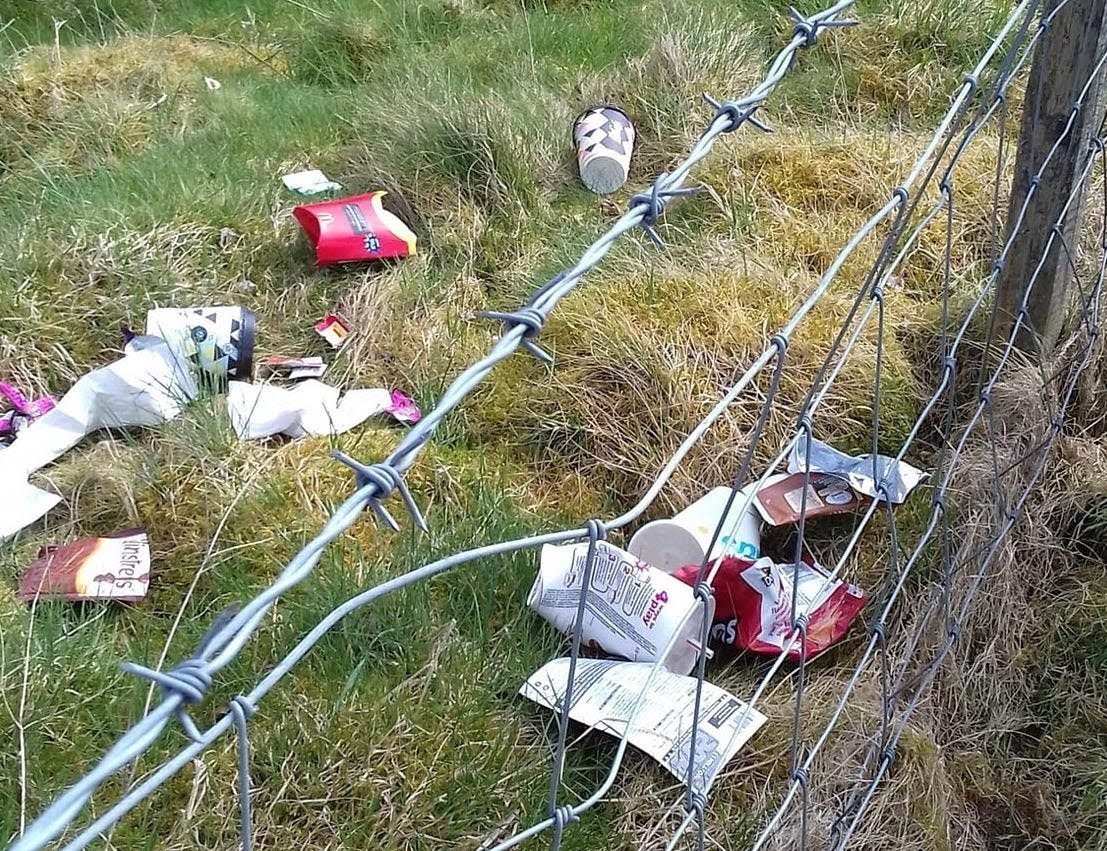 A motorist was fined after throwing litter from a car near Llanidloes.