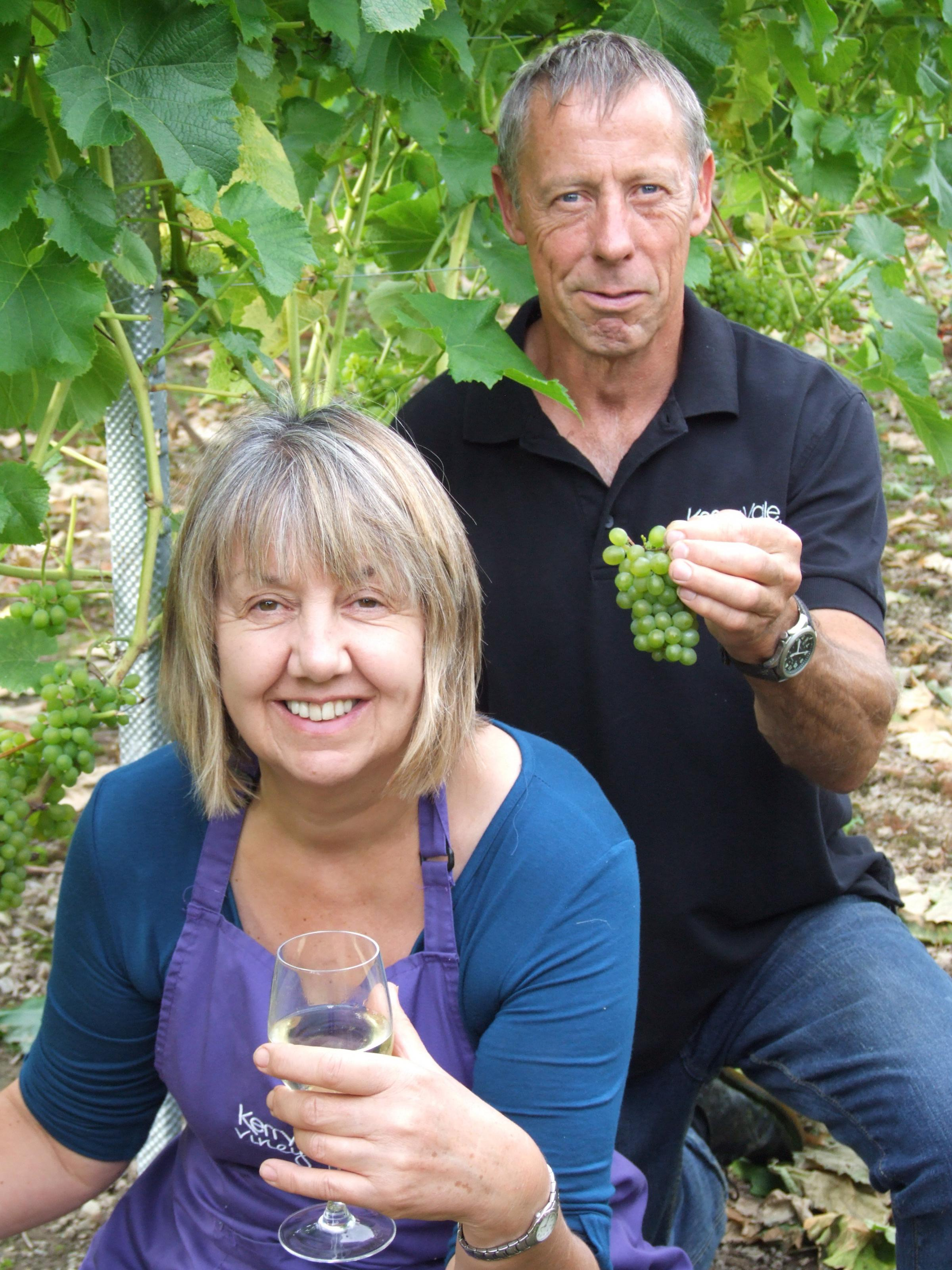 A chance to help harvest the grapes at the Kerry Vale Vineyard this month.