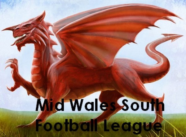Mid Wales League South